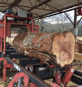 Portable Sawmill Reviews & Testimonials | TimberKing